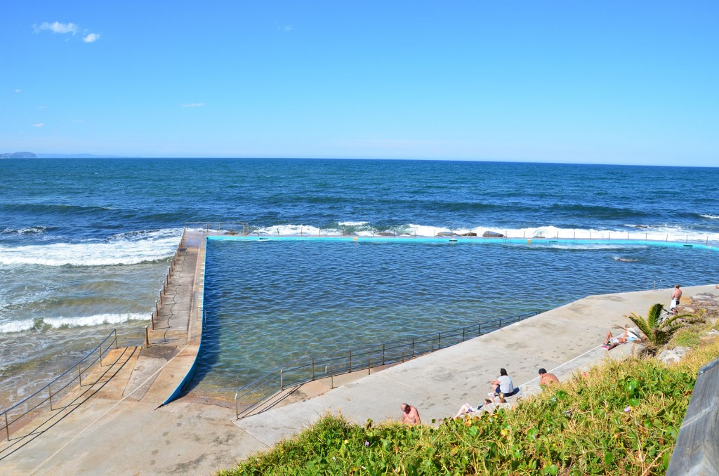 northern beaches manly council guidelines