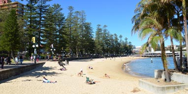Manly and the Northen Beaches: What's New