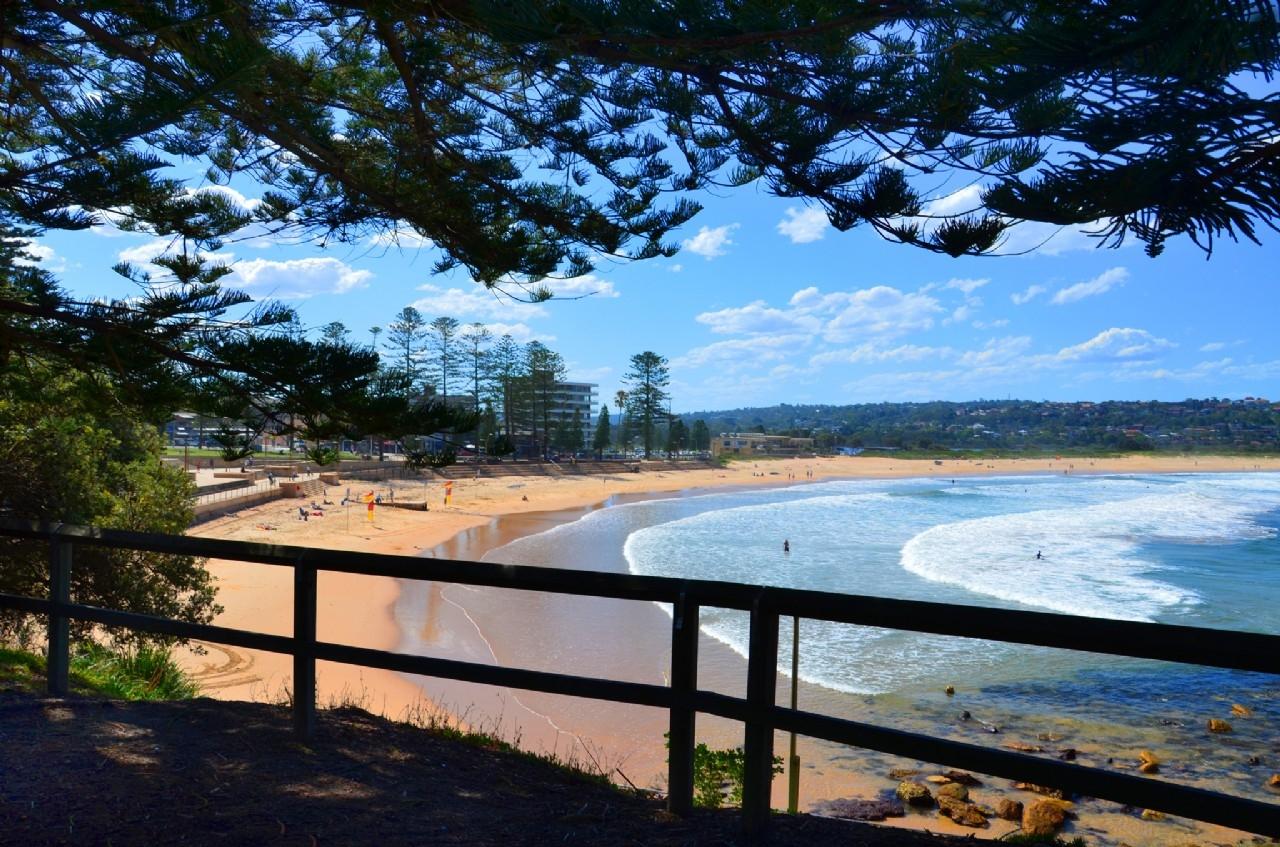 Dee Why Beach - Image �2014 ManlyAustralia.com