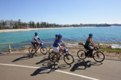 Cycling: The Ideal Way to Explore Manly!