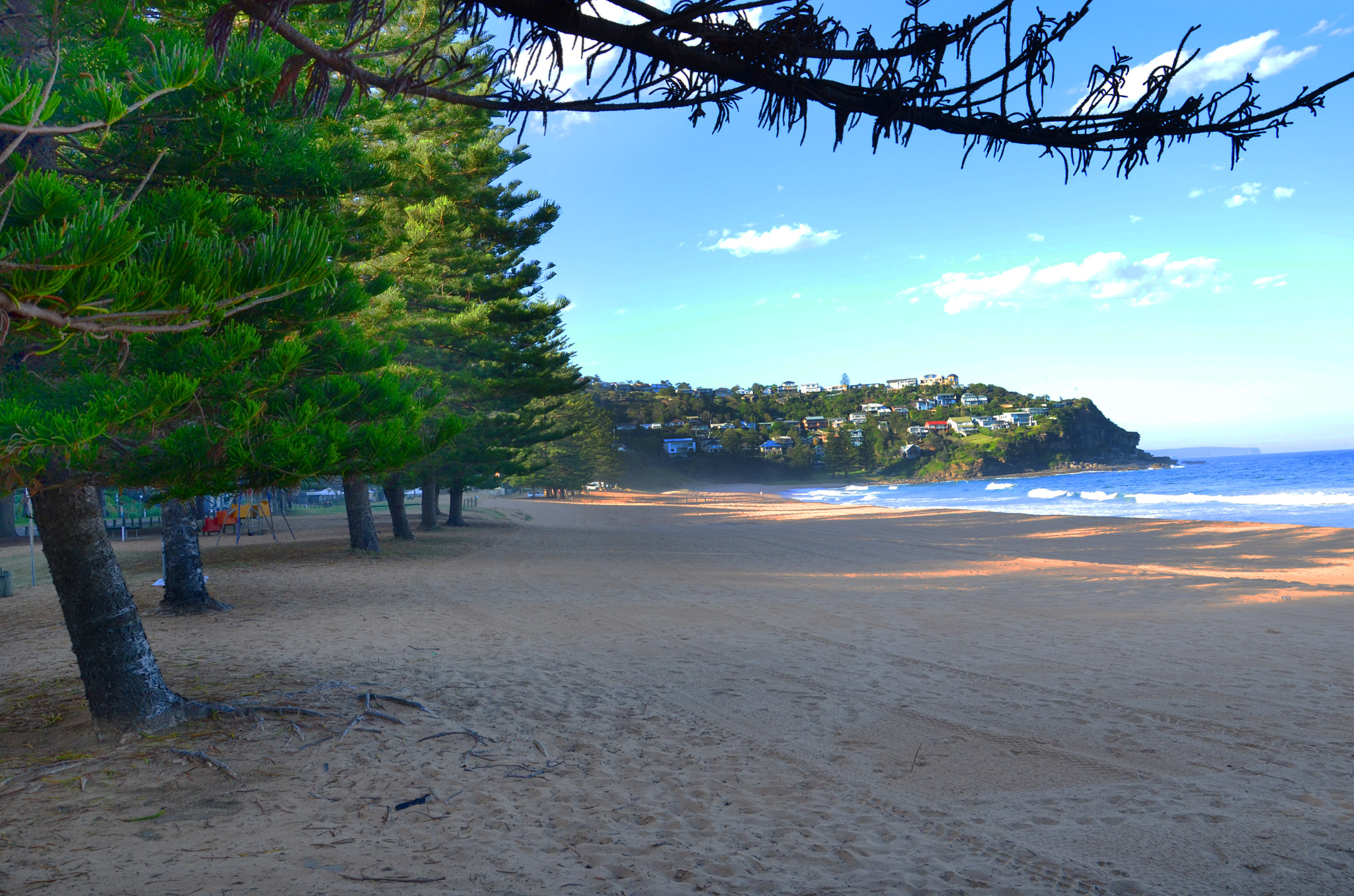 Whale Beach Manly Amp Northern Beaches Australia