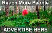 Advertise your business here.