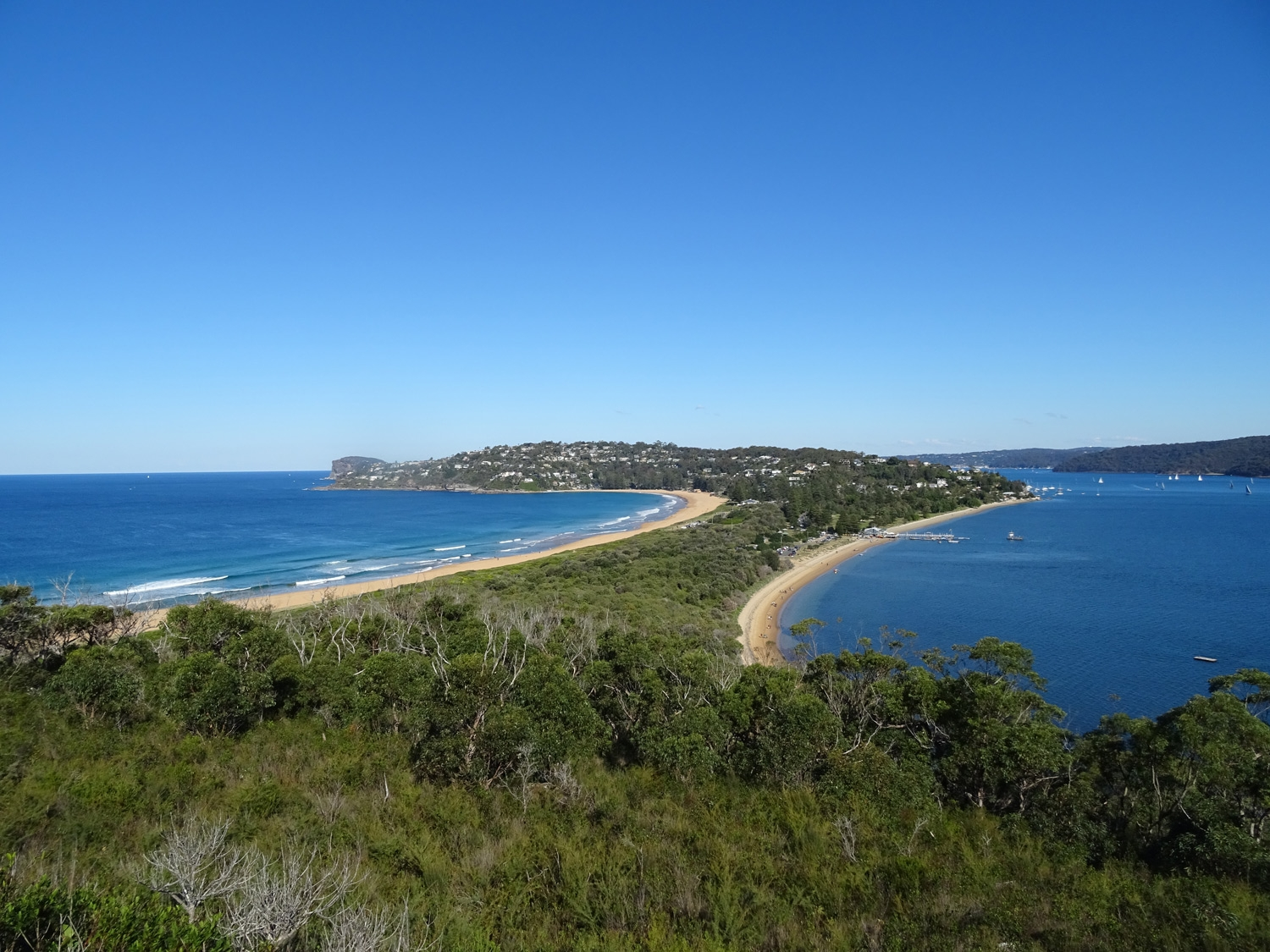 Views over Palm Beach and Pittwater