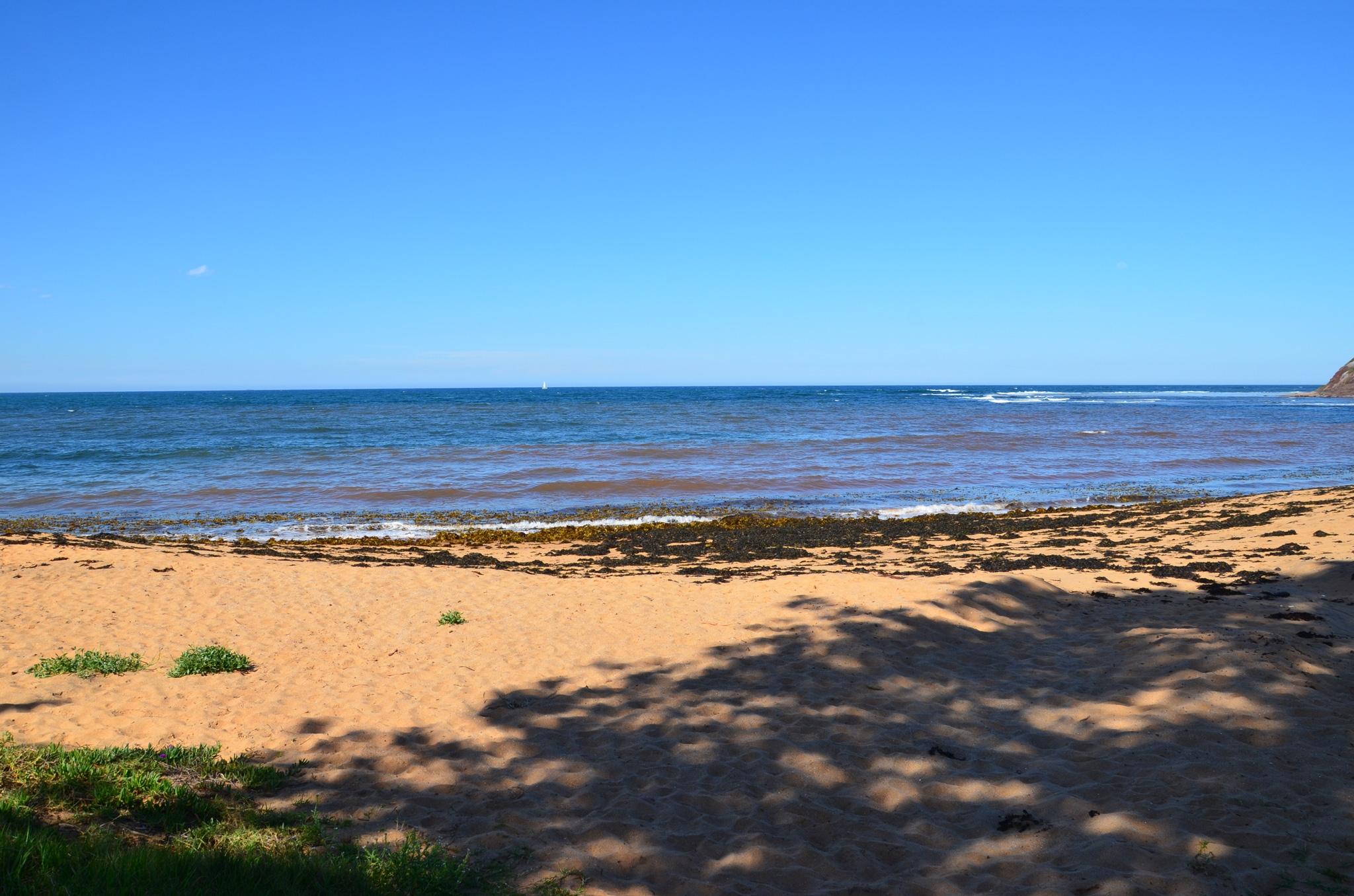 Long Reef - Image ©2014 ManlyAustralia.com