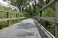 Boardwalk works to briefly close Narrabeen Lagoon trail