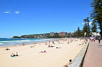 Manly Beach Receives Top Honour