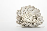 Exquisite Porcelain Sculptures Reveal the Power of Flowers