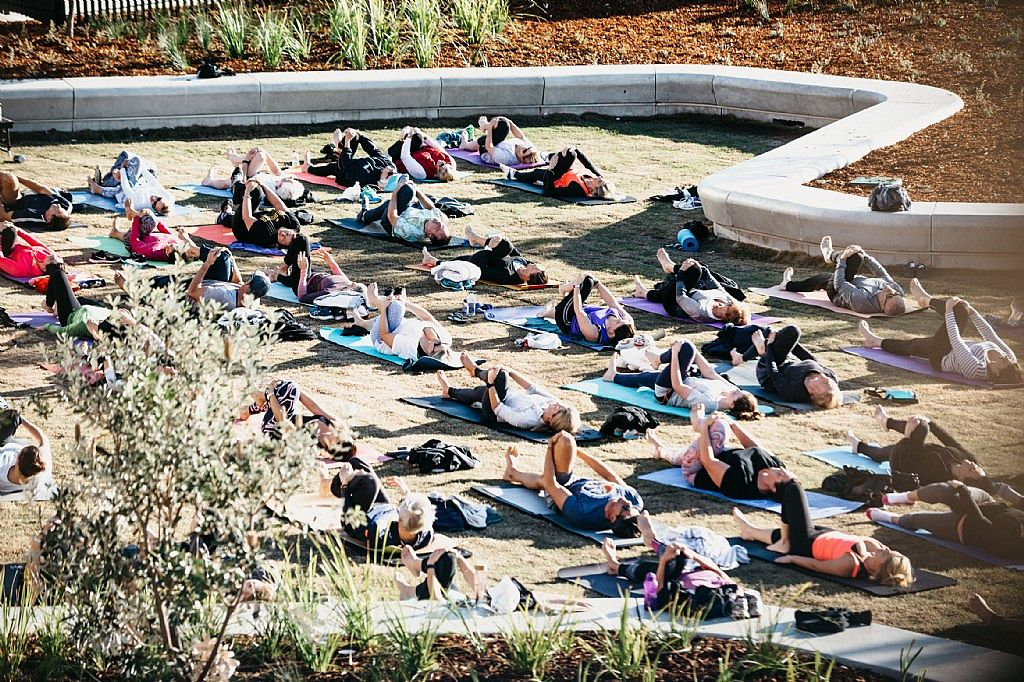 Harbord Diggers Stretches Into Yoga by the Ocean