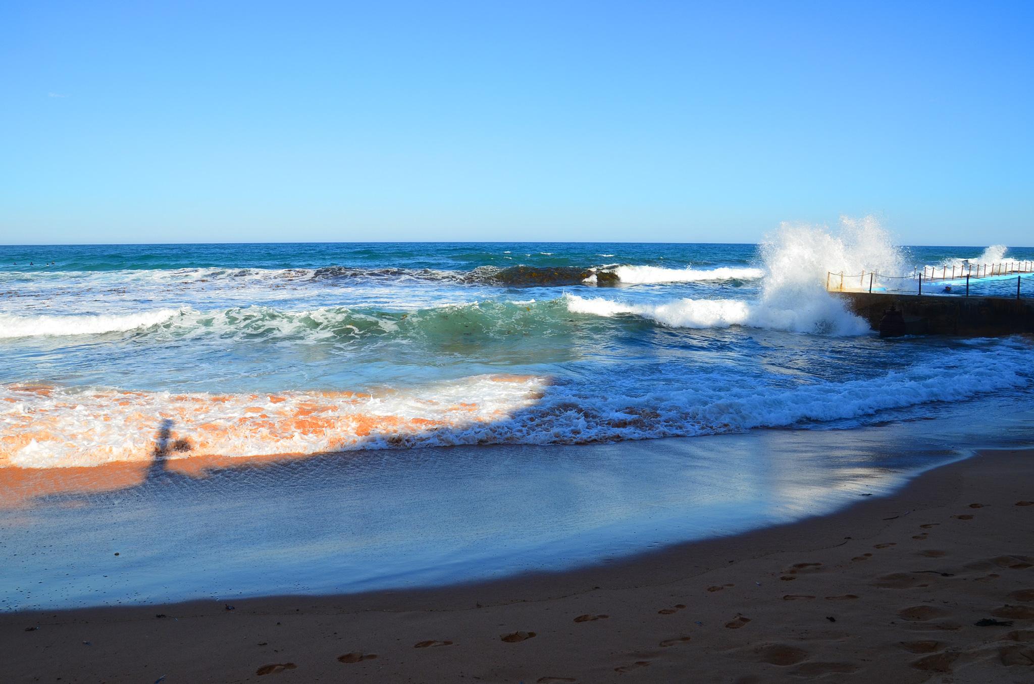 Bilgola Beach Surf Club Wedding